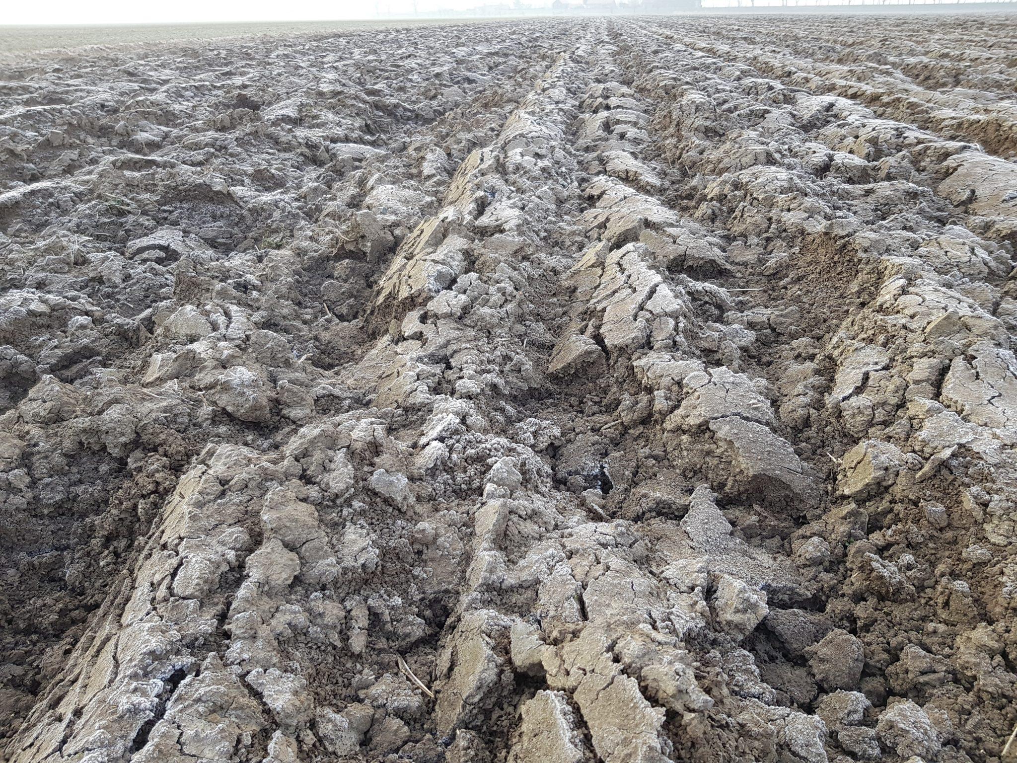 De structuur van de grond is optimaal!